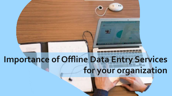 Importance of Offline data entry services for your organization